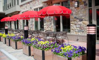 Outdoor terrace with patio tables, umbrellas and planters.